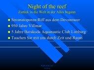 Night of the reef Zurück in die Welt in der alles begann - deepblue