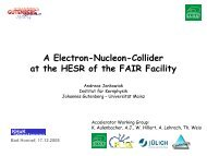 P - Komitee für Hadronen- und Kernphysik