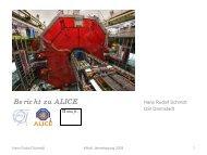 Bericht zu ALICE - Komitee für Hadronen- und Kernphysik