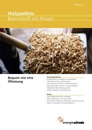 Holzpellets Brennstoff mit Power - Walker HT