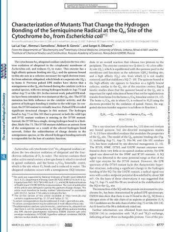 Characterization of Mutants That Change the Hydrogen Bonding of ...