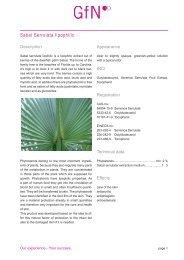 GfN Sabal Serrulata Lipophilic Leaflet - Kinetik