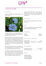 GfN Linseed Extract MEP Leaflet - Kinetik