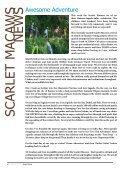 KSM Newsletter March 22nd 2013 - The King's International School ... - Page 6