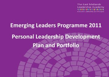 Personal Leadership Development Plan and Portfolio