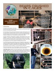 BEARS CRUSHED IN CAGES - Kinship Circle