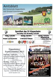 KW28/2013 - Kippenheim
