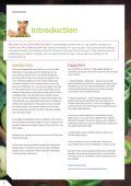 RAW FOOD RESET - Page 2