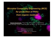 for production of PHAs from organic residues - kivi niria