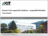 Enzyme in der organischen Synthese – ausgewählte Beispiele