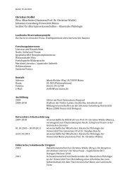 Curriculum vitae - Klassische Philologie Mainz - Johannes ...