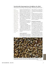 "Faszinierender Superorganismus Honigbiene: der ""Bien"""