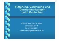 Vortrag Hoop, 1 MB - Kleintiere Schweiz
