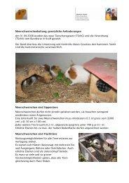 Meerschweinchen, Merkblatt - Kleintiere Schweiz