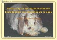 Hautkrankheiten beim Kaninchen - Kleintiere Schweiz