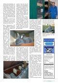 kleintiernews.de 12/2008 - Kaninchen - Seite 7