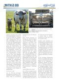 inka bb newsletter 2012_2 - Klima-Bob - Page 3