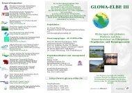 Informations-Flyer GLOWA Elbe III