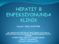 kronġk hepatġt b enfeksġyonu - Klimik