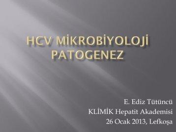 E. Ediz Tütüncü KLİMİK Hepatit Akademisi 26 Ocak 2013, Lefkoşa