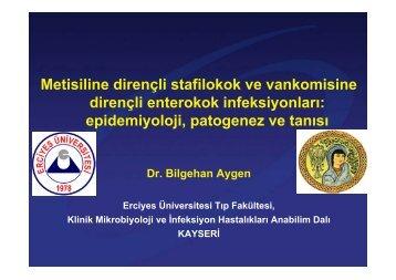epidemiyoloji, patogenez ve tanısı - Klimik