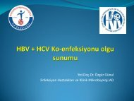 HBV + HCV Ko-enfeksiyonu olgu sunumu - Klimik