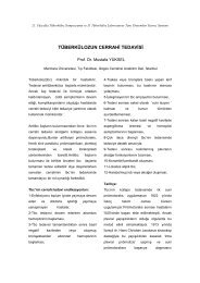 Tüberkülozun cerrahi tedavisi (Mustafa Yüksel) - Klimik