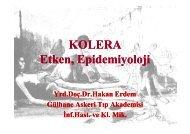 KOLERA Etken, Epidemiyoloji - Klimik