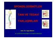 Spondilodiskitler ve Protez İnfeksiyonlarına Yaklaşım - Klimik