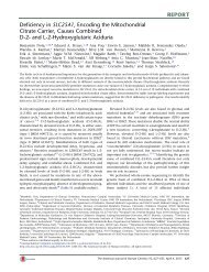 and L-2-Hydroxyglutaric Aciduria