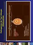 Pathophysiologie und Risikofaktoren allergischer Erkrankungen Dr ... - Seite 6