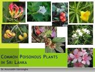 COMMON POISONOUS PLANTS IN SRI LANKA