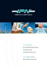 IPN – BRAINPOWER ... - kluge | texte