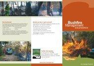 Bushfire Management and Prevention brochure (pdf. 837KB)