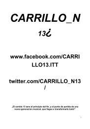 CARRILLO_N13.pdf - Biennale Bern