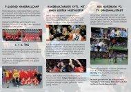 Handballturnier evtl. mit einem echten Weltmeister ... - TVG Handball