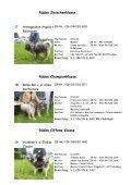 Austellungsergebnisse Clubschau 2006 Südrussischer Owtscharka - Page 6