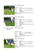 Austellungsergebnisse Clubschau 2006 Südrussischer Owtscharka - Page 7
