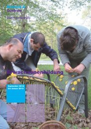 Katalog der Erwachsenenbildung - Diakonieverein Güstrow e.v.