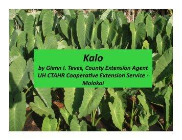 Growing Dryland Taro by Glenn Teves - The Kohala Center