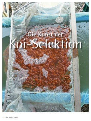Die Kunst der - Koi.de