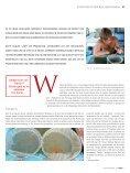 Die Kunst der - Koi.de - Seite 2