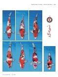 Layout 3 - Koi Kurier - Seite 4