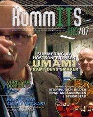 Nr 3 2007.pdf - KommITS