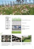 intensive Dachbegrünung - Kommunalinnovationen.de - Page 7