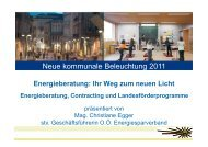 Kommunale Beleuchtung Energieberatung - Kommunalkredit ...