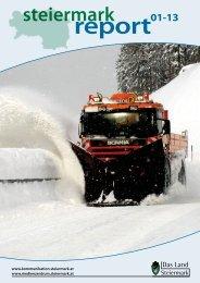 Steiermark Report Jänner 2013 - doppelseitige Ansicht (für größere ...