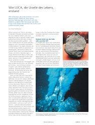 Wie LUCA, die Urzelle des Lebens, entstand (pdf ... - Universität Bern