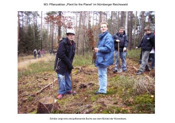 """M3: Pflanzaktion """"Plant for the Planet"""" im Nürnberger Reichswald"""