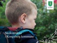 Presentasjon - Kongsberg Kommune